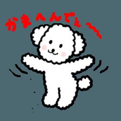トイプーのハナコロちゃん〜大阪弁編〜