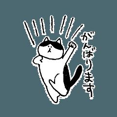 湖三郎の日常①