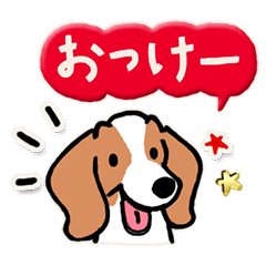 Every Day Dog ビーグル