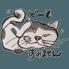 Rescue Cats Nekodokoro2
