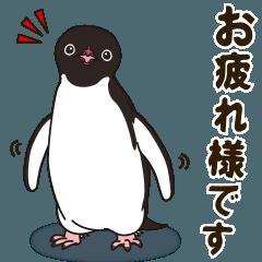 気さくなペンギン