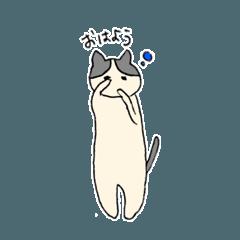 猫に素直になってもらおうスタンプ