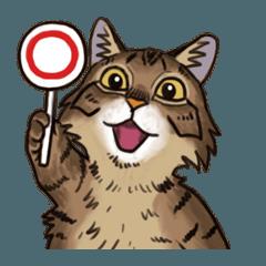 「瞬く」の猫スタンプ02
