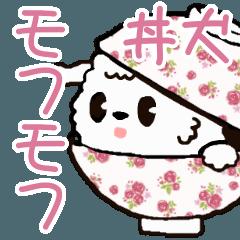 丼犬 モフモフ