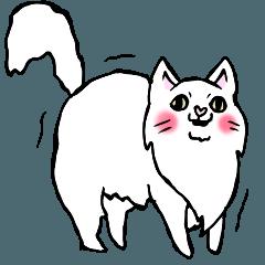 暮らしを見つめる猫(大型)