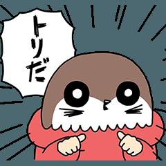 ワカルトリのゆる〜い日常