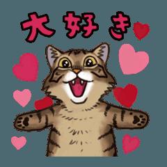「瞬く」の猫スタンプ03