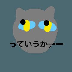 a- cat