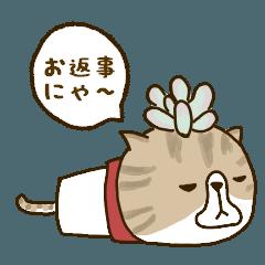ボタニカルニャンズ【返事】
