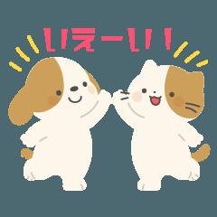 使いやすい犬と猫