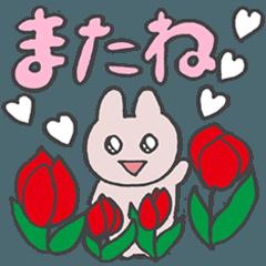 きら目のうさぎ/ 春Mix