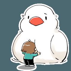 文鳥と女の子