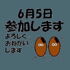 参加<6月-日別>納豆兄弟