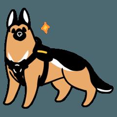 警察犬マクシム