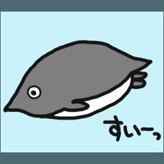 アデリーペンギン(リニューアル)
