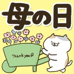 ◆母の日に感謝を伝える色々にゃんこ◆