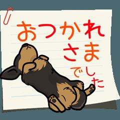 [LINEスタンプ] ダックス大好きスタンプ◆黒タン優しい敬語