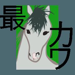 今ドコ!?競馬場(芦毛ver.)