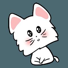 可愛い猫/no text version1