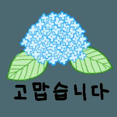 6月★[韓国語]紫陽花~鎌倉の旅行~