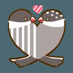 [LINEスタンプ] ことり(すずめぶんちょうキンカチョウ) (1)