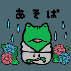 カエルくんの過ごし方(雨・梅雨版)