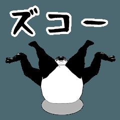 アイツ熊だぜ!(不動)