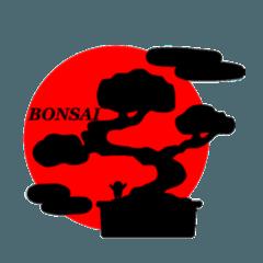 BONSAI!