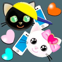 Twin Kittens 3