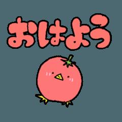 日常でつかえるピヨトマト