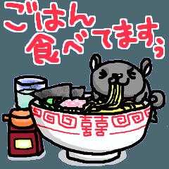 ゆる犬くま吉さん3 新生活編