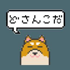 ドット絵!北海道弁の柴犬