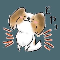 犬語ずかん【パピヨン編】