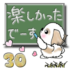 【大きめ文字】シーズー犬(普段使う言葉)30