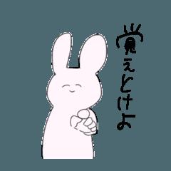 生!ウサギさん