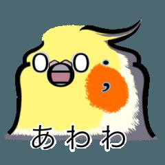 顔文字インコちゃん