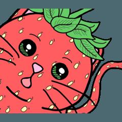 猫はイチゴです