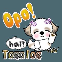 シーズー犬(タガログ語)Vol.1