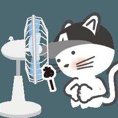動く! 猫! A! 夏編 redaction