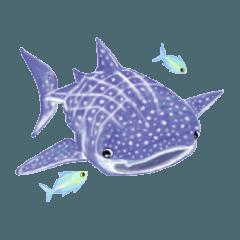 色鉛筆で描いた水族館