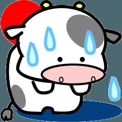 子牛のモーちゃん①(夏)