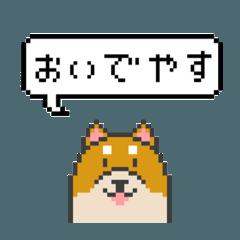 ドット絵!京都弁の柴犬