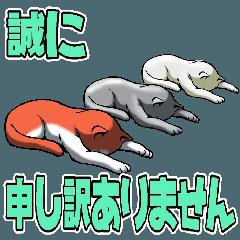 デカ文字大好き猫2