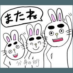 ウサギの眉