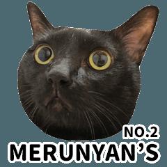 MERUNYAN'S NO,2
