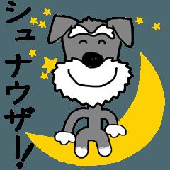 愛犬家の毎日スタンプ*シュナウザー