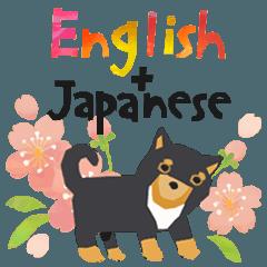 楽しい英語(和訳・日本語読み方付き)