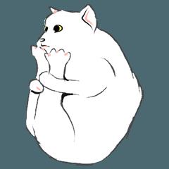 馬鹿みたいじゃないなたかわいい猫