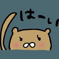 こぐまのぷーちゃん