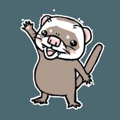 フェレット平八 日常編01 ferret heihachi